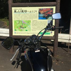 埼玉・嵐山渓谷