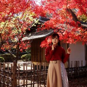 桜山公園冬桜モデル撮影会