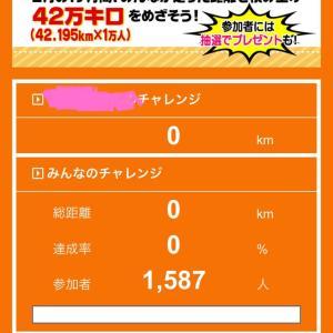 愛媛マラソンチャレンジ企画