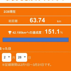 42.195km チャレンジ