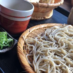 なんと珍しい!主人と京都散策