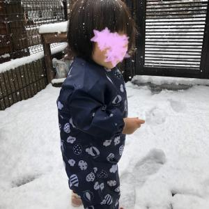 【1歳】2m6d 雪遊び