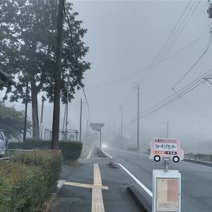 雨降る前に本宮山!雲海~!