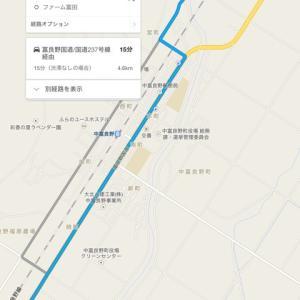 【必見】ファーム富田に行く裏道‼︎中富良野ラベンダー祭りも楽しもう♫