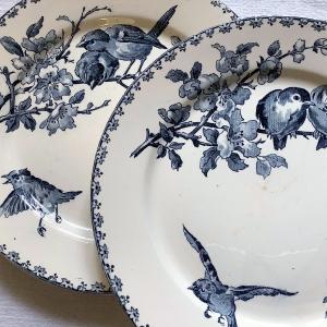 antique*サーグミーヌ製FAVORI青皿 ソシエール arcopal などUP~!