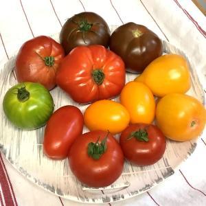 夏は 色とりどりのトマトで、冷やしトマト~!!!