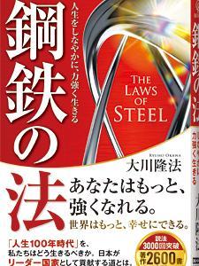 「鋼鉄の法」の年「アイアンマン」にハマる