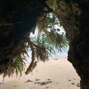 沖縄旅2019 備忘録⑦ ついにおばあの儀式を受ける