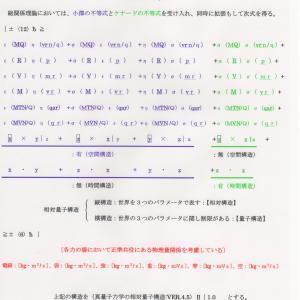 総関係理論と真量子力学原理(相対量子構造:VER.4.5)Ⅱ|1.0 JO準備論文NO.143