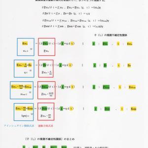 総関係理論と子の推測不確定性関係 JO準備論文 NO.156