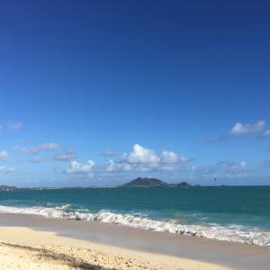 ハワイの大きなイベント サンクスギビングデーがやってくる。