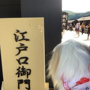 箱根関所【犬抱っこOK】