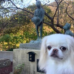 かっぱの寺栖足寺に犬連れ