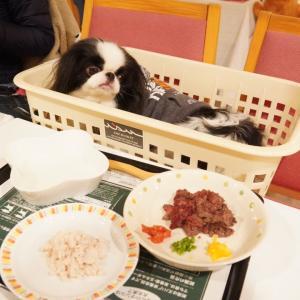 三浦海岸アレーナ②夕食
