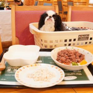 三浦海岸アレーナ③朝食