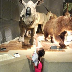 博物館はちっちゃくても楽しい