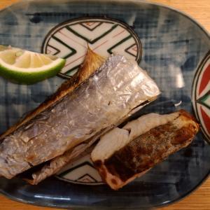 ドラマがあった釣り倶楽部の船太刀魚