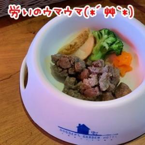 ウマウマ食べに行こ(*´艸`*)♪