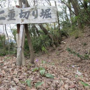 城山(じょうやま)蕗野寺城跡