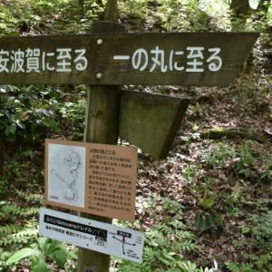ふくいの山城 ~一乗谷城~(つづき)