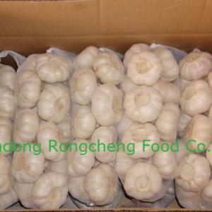 China 2013 fresn garlic