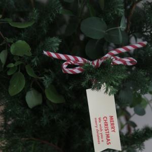 クリスマスだから杉をかざろう。