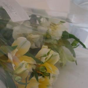 520円で買った花を、華やかに飾るには?