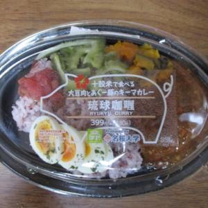 学P2019,琉球咖喱|名桜大学