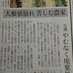 横浜放浪記、、