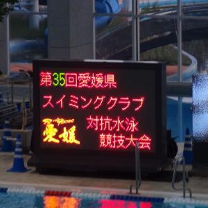 2019年度 SC対抗水泳競技会に参加しました。