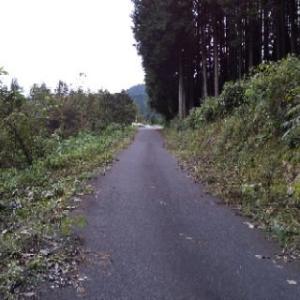 沼田までの道