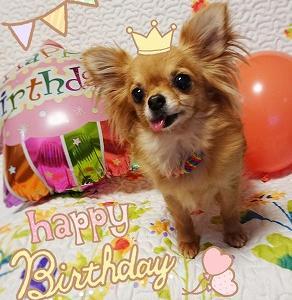 UNI ♥Happy 5th birthday!