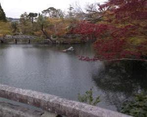 永観堂庭園