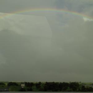 虹(NIJI)。