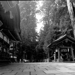 比叡山・高野山・熊野三山