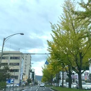 銀杏並木と「コーヒーショップ ハッピー」のモーニングセット