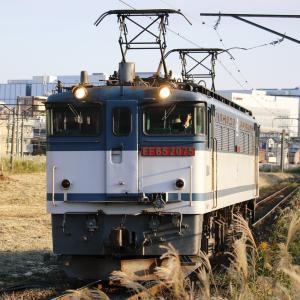 新鶴見界隈832-3(単2491レ EF65 2075, 77レ EF65 2094)