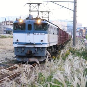 新鶴見界隈833-2(77レ EF65 2050)