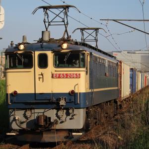 新鶴見界隈931-7(4073レ EF65 2065)