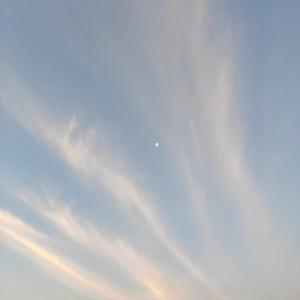 20/2/15(土)館山湾