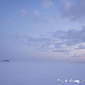 雪原と大きな空