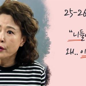 韓国ドラマ 一度行って来ました 第25,26話あらすじ
