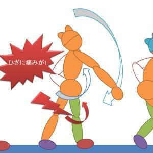 ひざの痛み、原因が!筋力あるほど注意?解消のヒントは基本練習◆バドミントン話