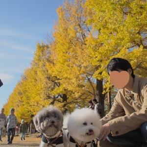 昭和記念公園へGO!の巻