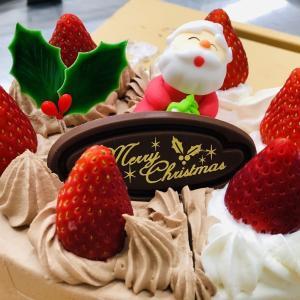 チョコと生クリームの2色のクリスマスケーキ