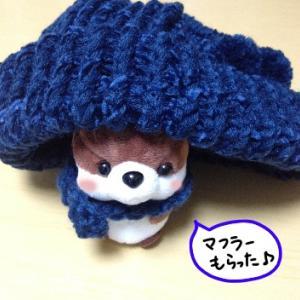 セリアの帽子メーカーで作ってみた