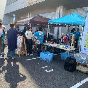 第11回藤沢市保健所合同譲渡会 開催報告