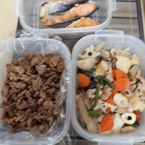 弁当(煮物、鮭‥