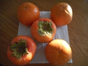柿ごちそうさま