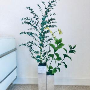 花と漱石とバレエ